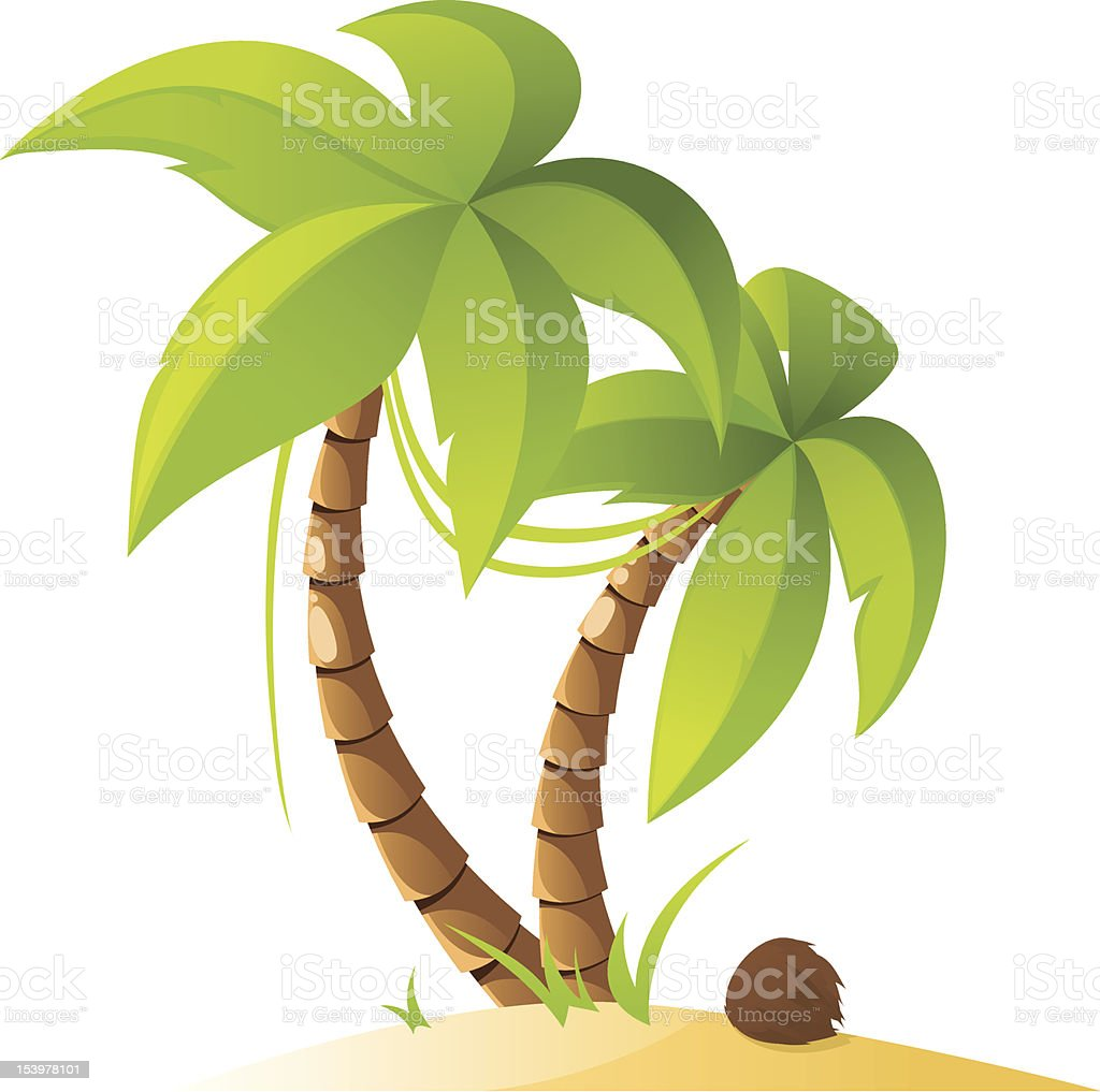 Palm trees Two palm trees with coconut. Beach stock vector