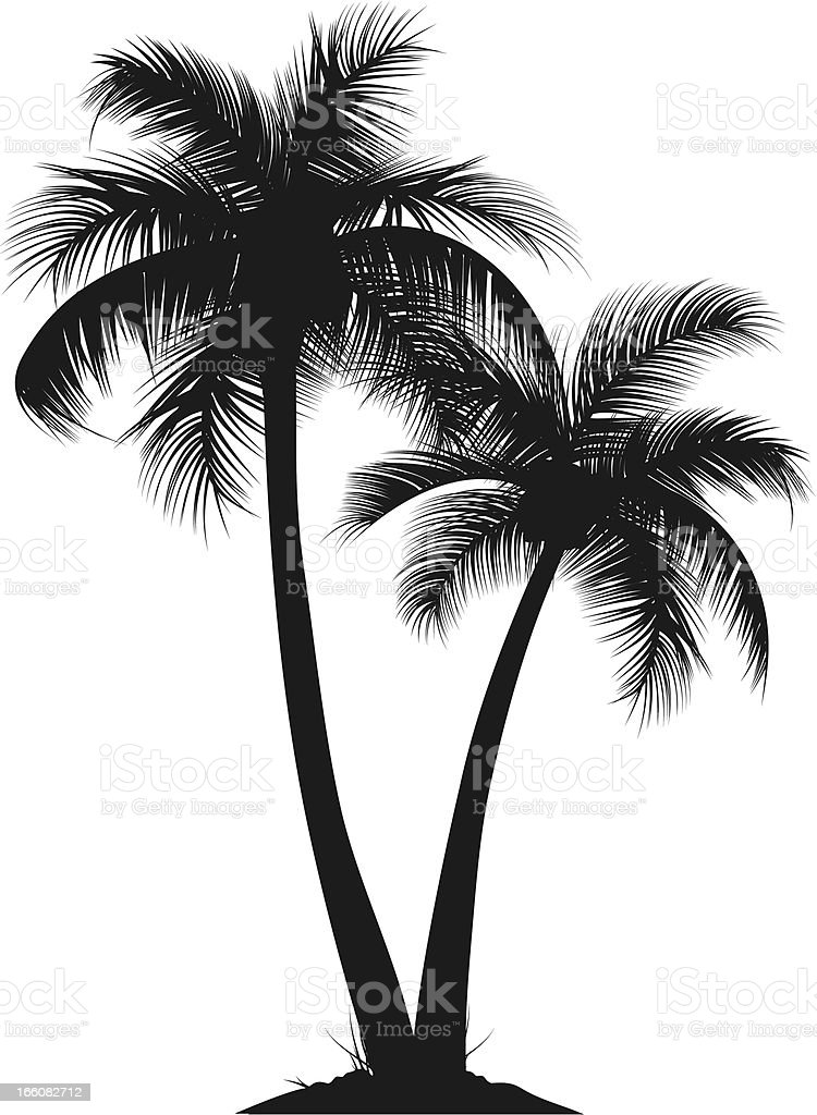 palm trees stock vector art more images of beach 166082712 istock rh istockphoto com palm tree vector art free palm tree vector free download