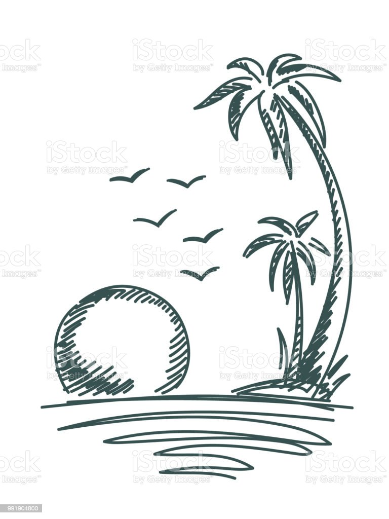 Vector Illustration Tree: Palm Trees Vector Stock Vector Art & More Images Of Art