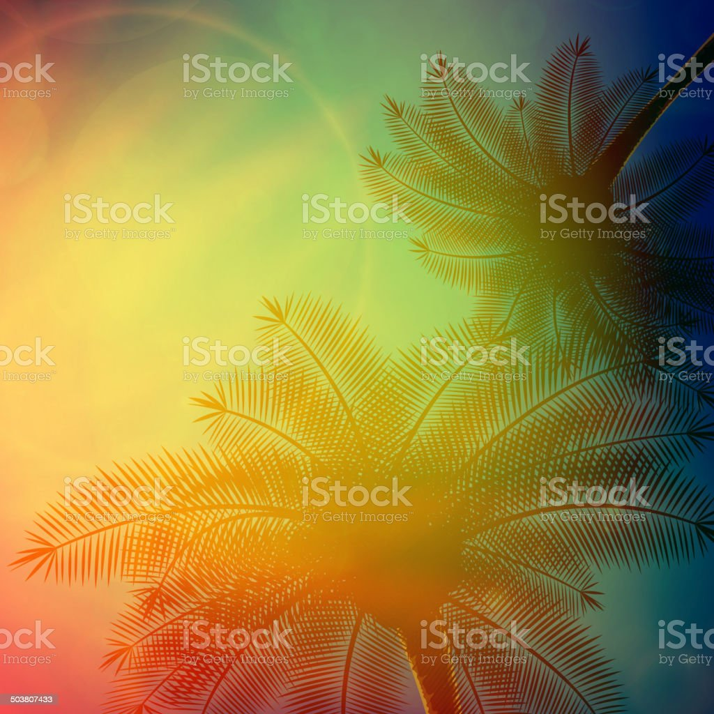 Palm trees with beautiful sunset. royalty-free palm trees with beautiful sunset stock vector art & more images of backgrounds