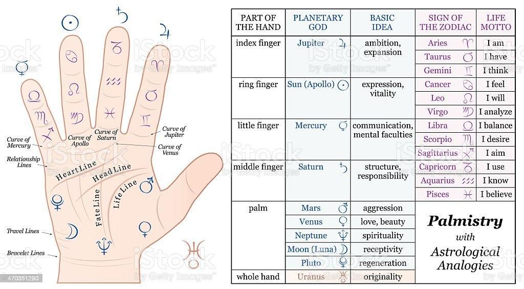 Palmistry Astrology Basic Analogies Chart Stock Illustration