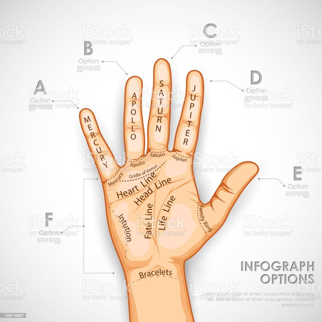 Palmistry Infographics vector art illustration