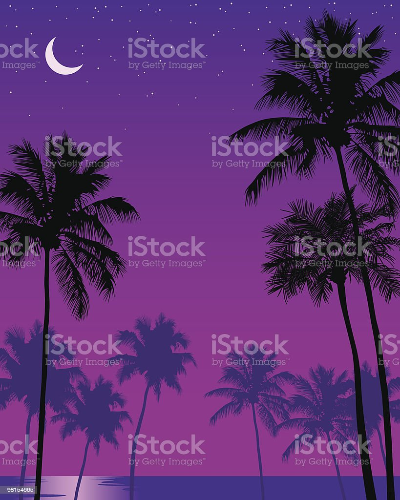 Palms in the Moonlight royalty-free palms in the moonlight stock vector art & more images of 12 o'clock