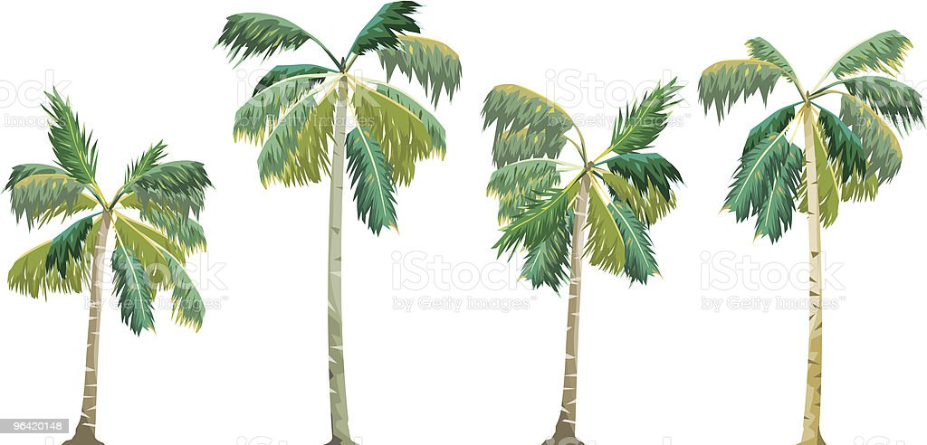 Palms Set royalty-free palms set stock vector art & more images of close-up