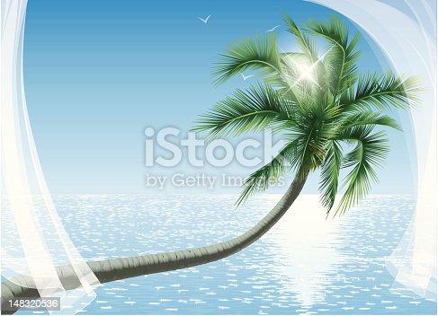istock Palmtree Ocean Sun and Transparent Curtains 148320536