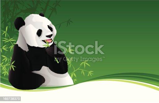 istock Panda Background 165738370