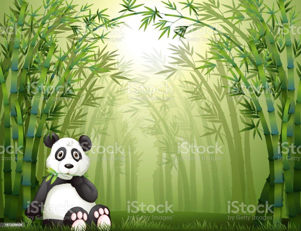 Panda bear and bamboo forest royalty-free stock vector art