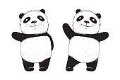 Cute panda character cartoon isolated on white.