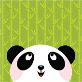Panda and bamboo. Please, you can see more of my original work in my lightboxs:http://i681.photobucket.com/albums/vv179/myistock/ani2.jpg