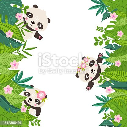 istock Panda border with place for your text. Vector illustration. 1312386491
