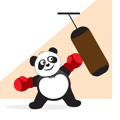 Panda boxer hits a punching bag.