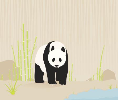 Panda in nature