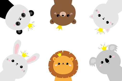 Panda, koala bear lion cat bunny rabbit hare face head set. Cute kawaii cartoon funny baby character. Golden crown. Scandinavian style. Kids frame. Love. Flat design. White background.