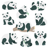 Cartoon illustration of cute baby panda bears in various poses isolated on white background. vector 8 EPS
