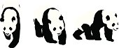 Vector illustration set of panda bear, grizzly brown bear, black bear, and white polar bear on brown background.