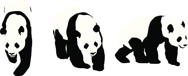 illustrations, cliparts, dessins animés et icônes de panda silhouettes des - panda