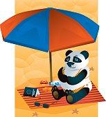 Panda sunbathing