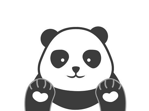 Panda vector. Cute happy panda face illustration.