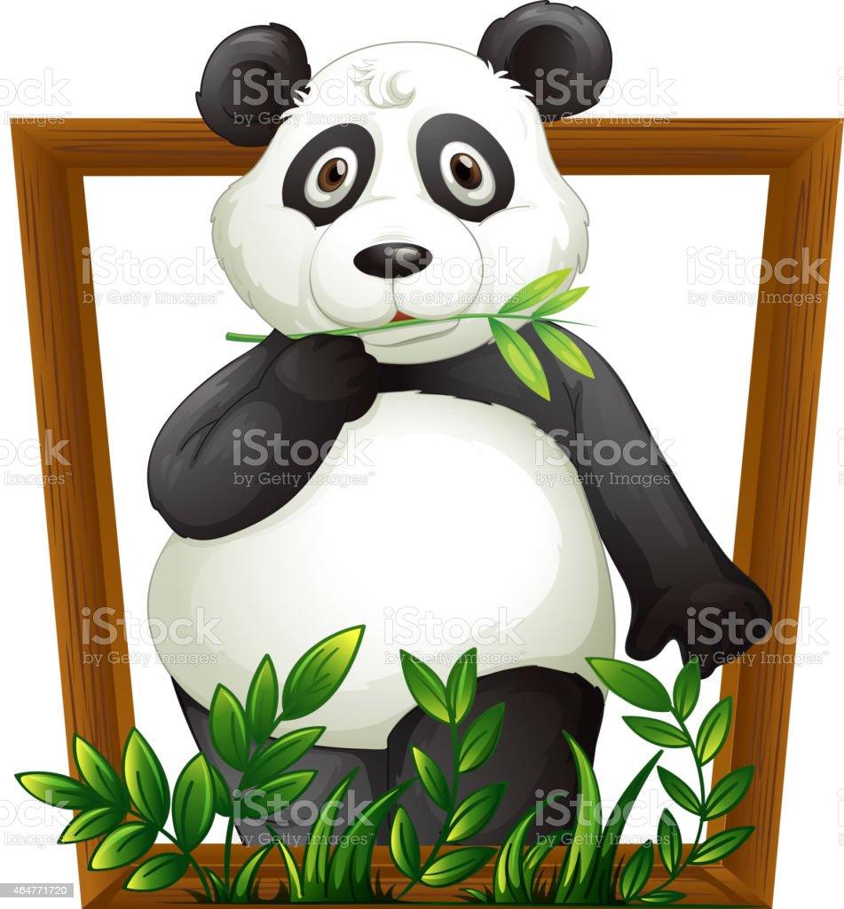 Panda vector art illustration