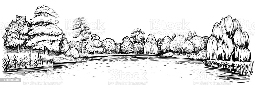 Panoramic landscape with forest and lake, vector hand drawn illustration. vector art illustration