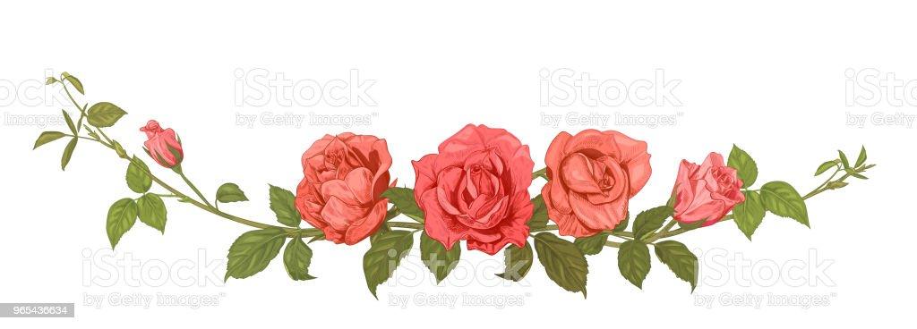 Vista panorâmica: buquê de rosas. Borda horizontal: ramos com flores cor de rosa, vermelhos, botões, folhas, branco fundo de verde. Ilustração em gravura estilo vintage croqui, quadro para design, vetor - Vetor de Antigo royalty-free