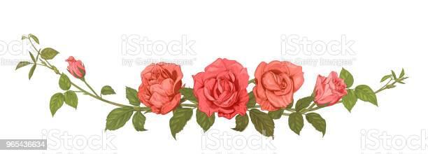 Vetores de Vista Panorâmica Buquê De Rosas Borda Horizontal Ramos Com Flores Cor De Rosa Vermelhos Botões Folhas Branco Fundo De Verde Ilustração Em Gravura Estilo Vintage Croqui Quadro Para Design Vetor e mais imagens de Antigo