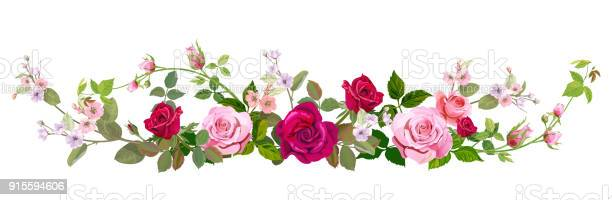 Panoramic view bouquet of roses spring blossom horizontal border red vector id915594606?b=1&k=6&m=915594606&s=612x612&h=zhlqhn1i0rjcgfmwtfwmlsewevhpihzci3nwnkdlw4s=