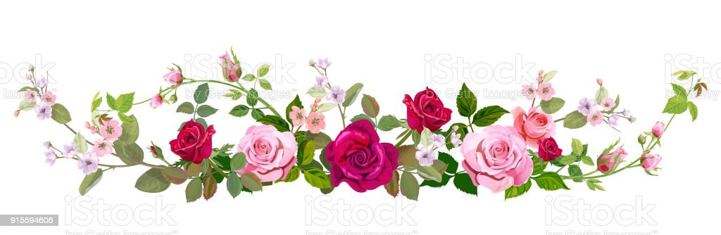 Panoramic view: bouquet of roses, spring blossom. Horizontal border: red, mauve, pink flowers, buds, green leaves on white background. Digital draw illustration in watercolor style, vintage, vector vector art illustration