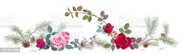 Panoramic view with red pink roses pine branches and cones needles vector id871911648?b=1&k=6&m=871911648&s=612x612&h=enea90c4fnezvvmmbbptjwc1lxnru0mkyigxsijmgfm=