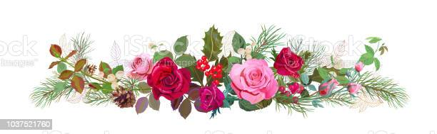 Panoramic view with red pink roses pine branches cones holly berry vector id1037521760?b=1&k=6&m=1037521760&s=612x612&h=f3lr9eovuwnq2tms0xqt5igoq9dlboicmb v3xn2zce=