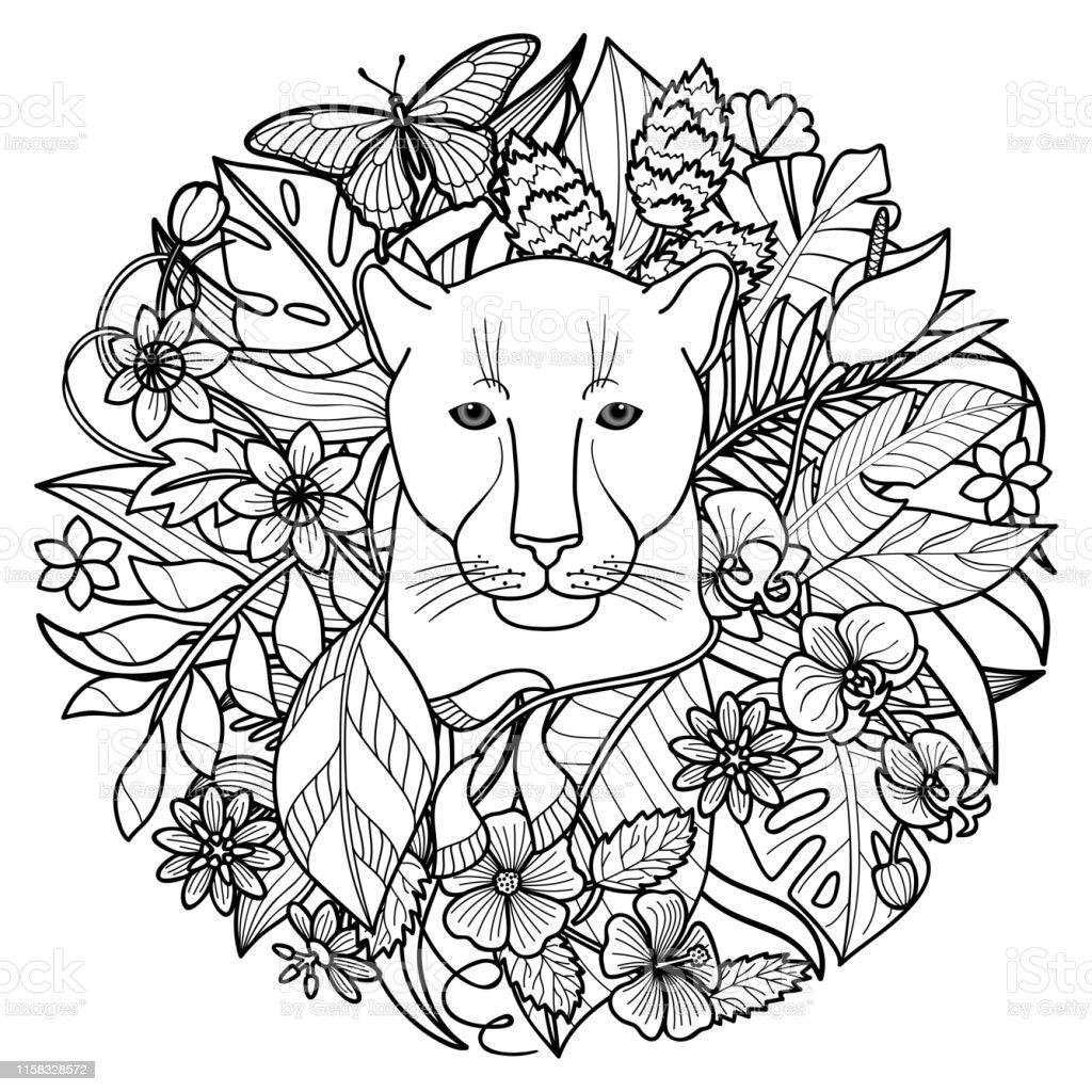Une Page De Coloriage Tropical De Panthère Et De Plantes Vecteurs libres de droits et plus d ...