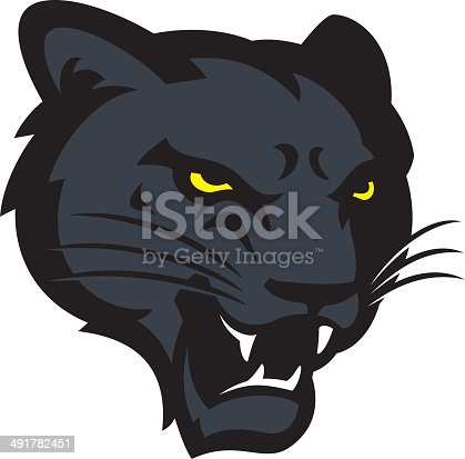 istock Panther Head 491782451