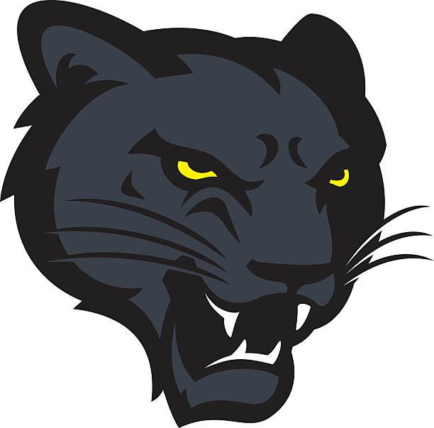 panther head - jaguar stock illustrations
