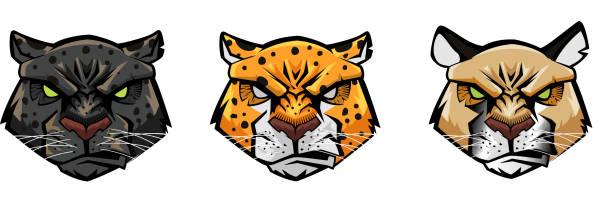 Panther Jaguar pantera onça jaguar forte cabeças rostos faces jaguar stock illustrations