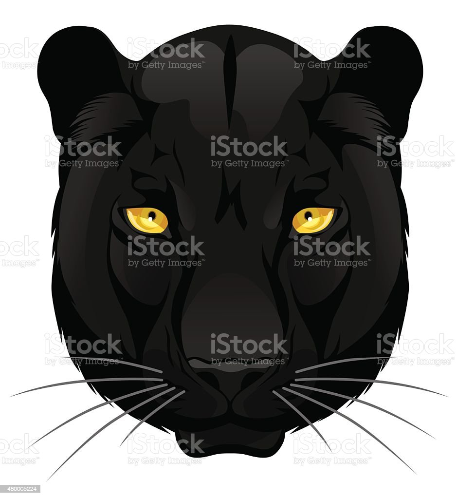 Panther portrait vector art illustration