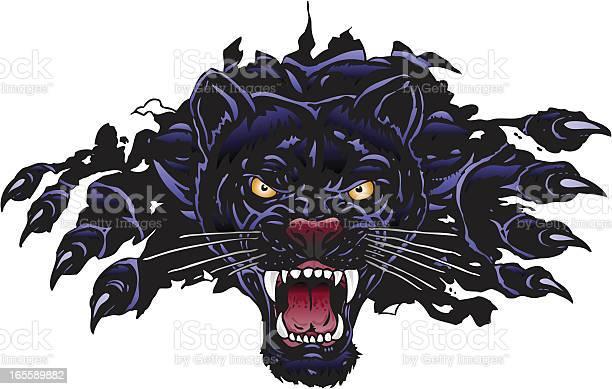 Panther rip vector id165589882?b=1&k=6&m=165589882&s=612x612&h=k  lspvc7brbtelplzejxxik6qwt8zmdkj3by5ucm7g=
