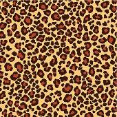 panthera pattern