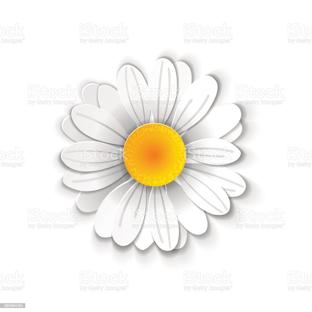 Paper art chamomile. royalty-free paper art chamomile stock vector art & more images of art