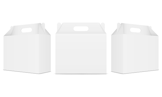 Paper carton boxes with handle