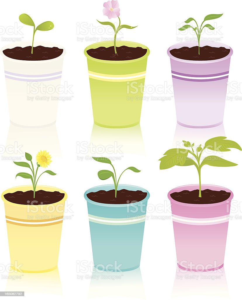 Paper Cup Sprouts vector art illustration