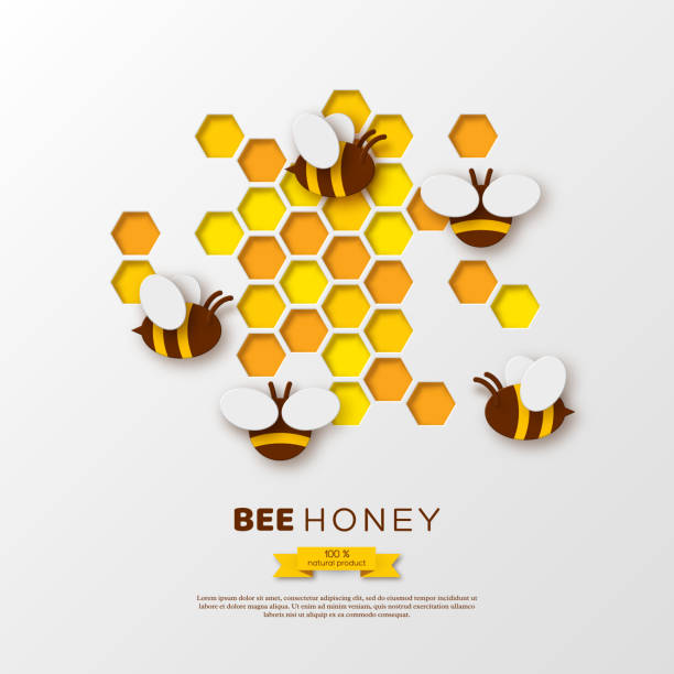 Paper cut style bee with honeycombs. Template design for beekiping and honey product. White background, vector illustration. Paper cut style bee with honeycombs. Template design for beekiping and honey product. White background. Vector illustration. beehive stock illustrations