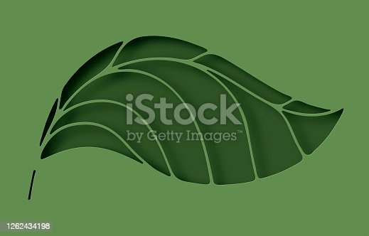 istock Paper elegant leaf hole layer cut abstract background. Ecology and environment conservation concept. Paper art style. Vector illustration. 1262434198