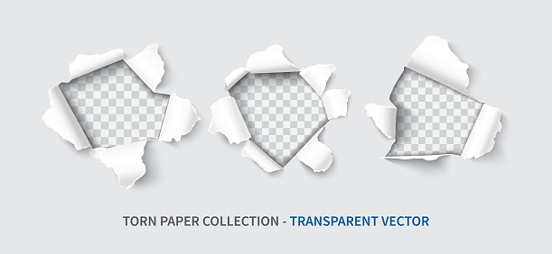 Paper hole set realistic vector