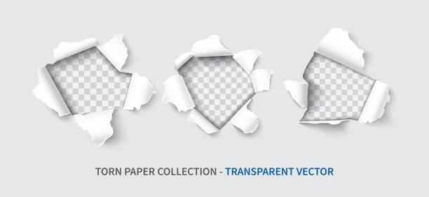 bildbanksillustrationer, clip art samt tecknat material och ikoner med papper hål ställa realistiska vektor - hål