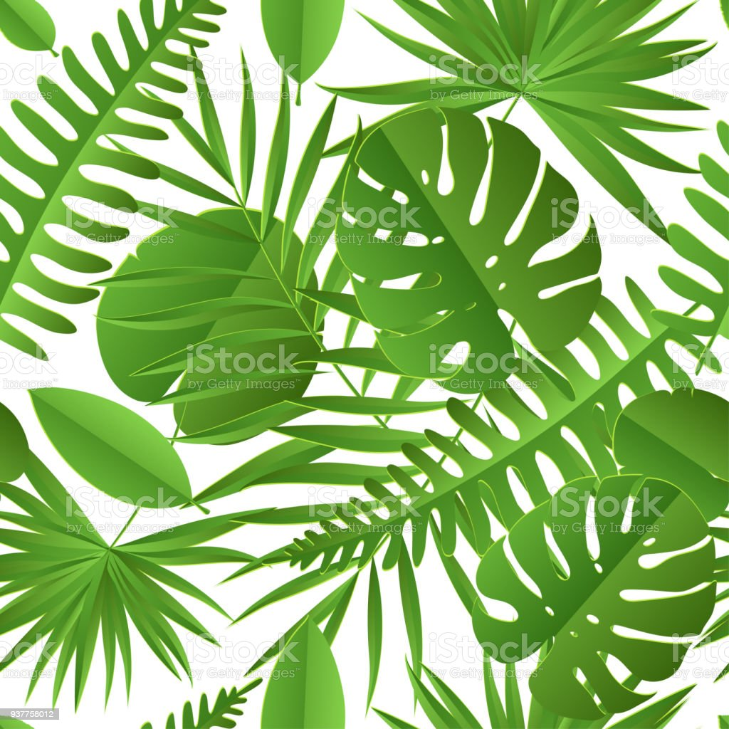 Paper Palm Monstera Leaves Seamless Pattern Summer Tropical