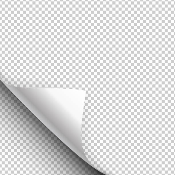 紙のポスターは、包まコーナーでハングアップします。ベクトル図 - ページ点のイラスト素材/クリップアート素材/マンガ素材/アイコン素材