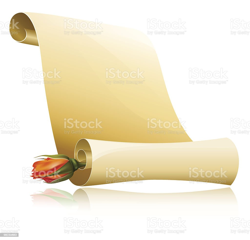 Paper scroll with rose. royalty-free paper scroll with rose stock vector art & more images of blank