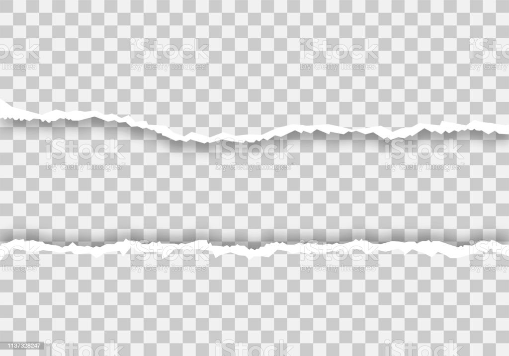 Paper torn. Edge page. Empy paper. Isolated background. - vector...