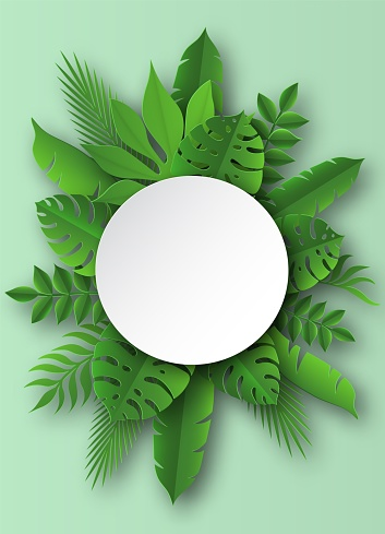 Paper tropical leaves. Papercut summer beach exotic pulm decoration vector round banner