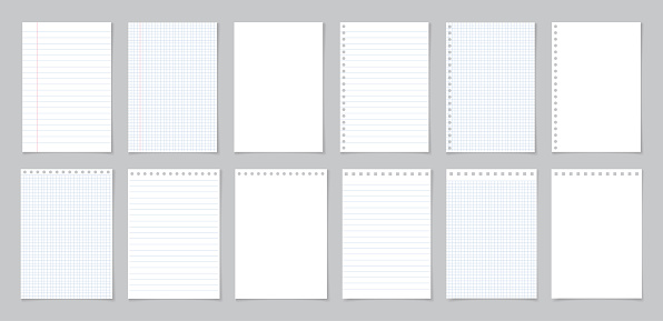 Paper with line and grid. Page of school notebook. White sheet for note. Notepad with texture. Template of notepaper isolated on gray background. Blank letter of diary for homework, write. Vector